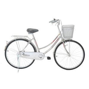 Xe đạp Mini inox 24