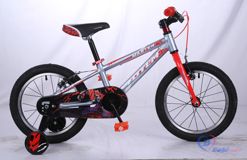 Xe đạp TOTEM 903-16