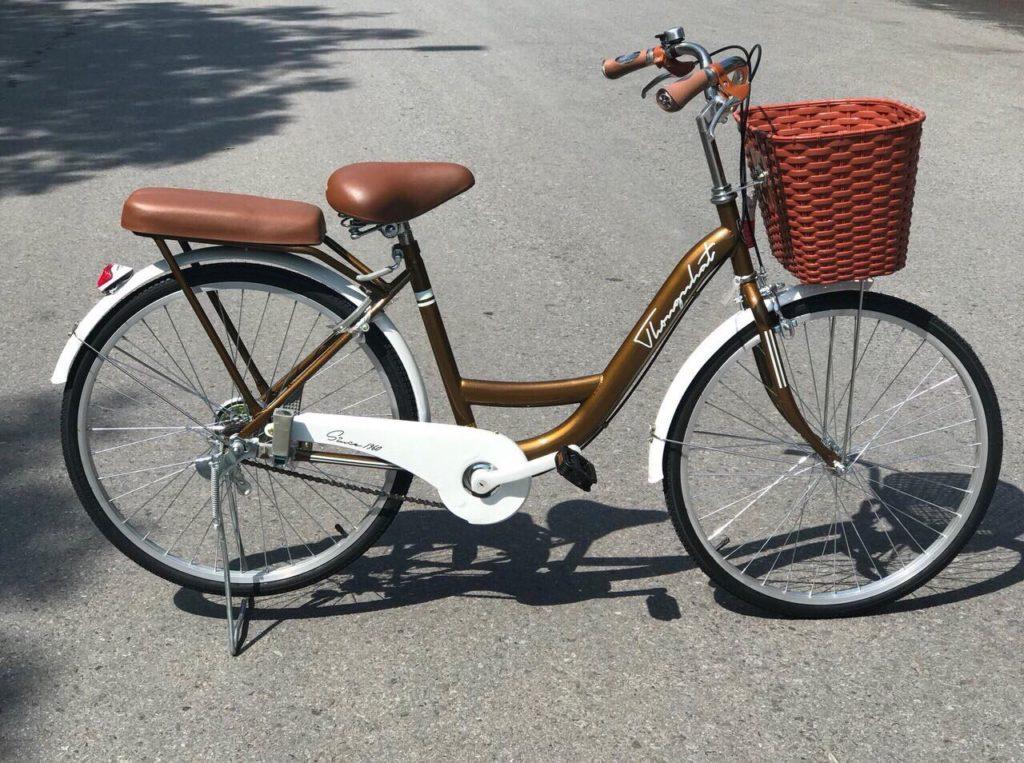 Xe đạp New 24-1