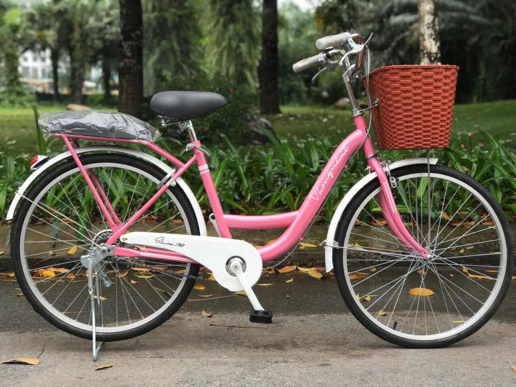 Xe đạp New 24