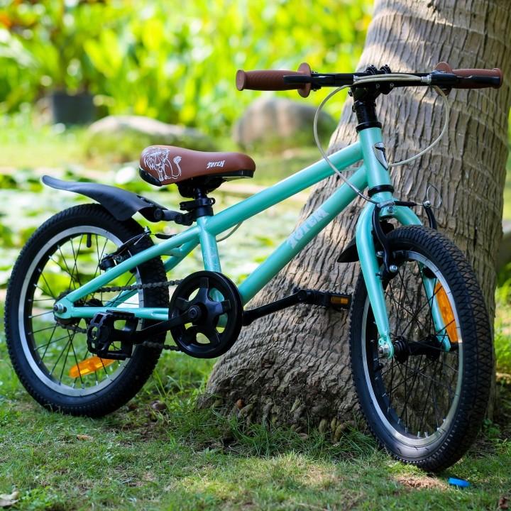 Xe đạp Totem 909-16