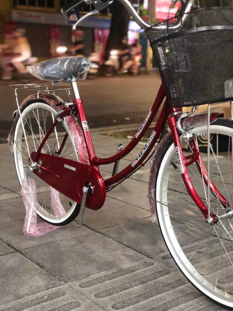 Xe Đạp Mini Việt Nhật