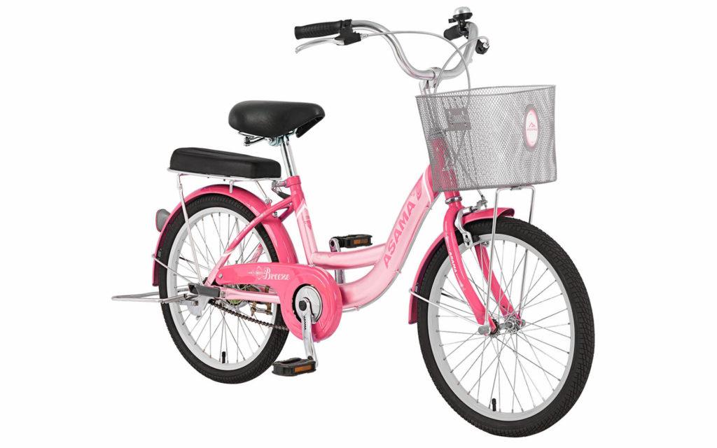 Xe đạp Asama BR2002