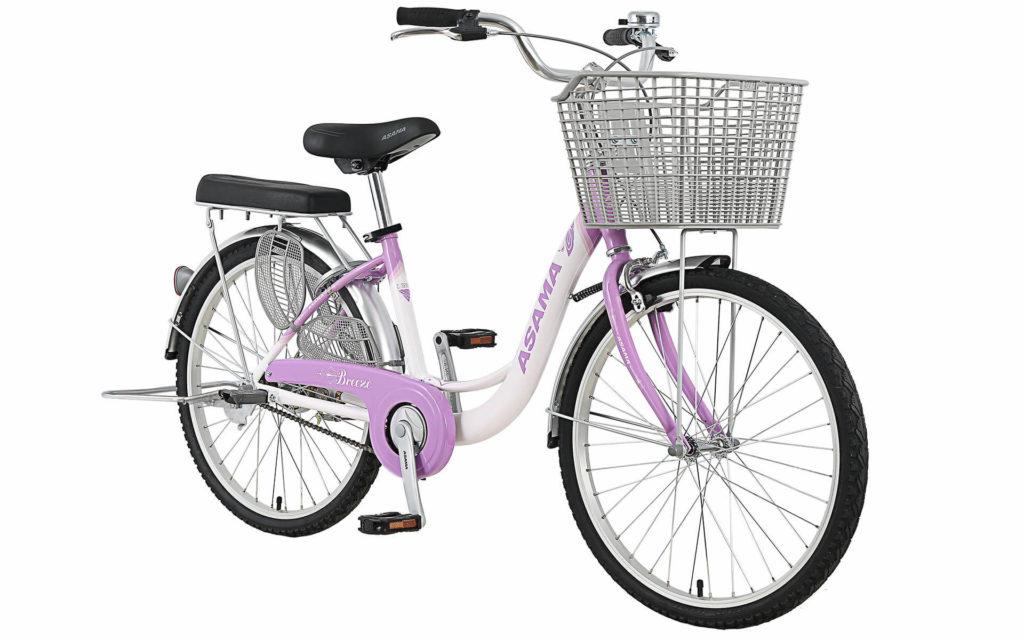 Xe đạp Asama BR2402